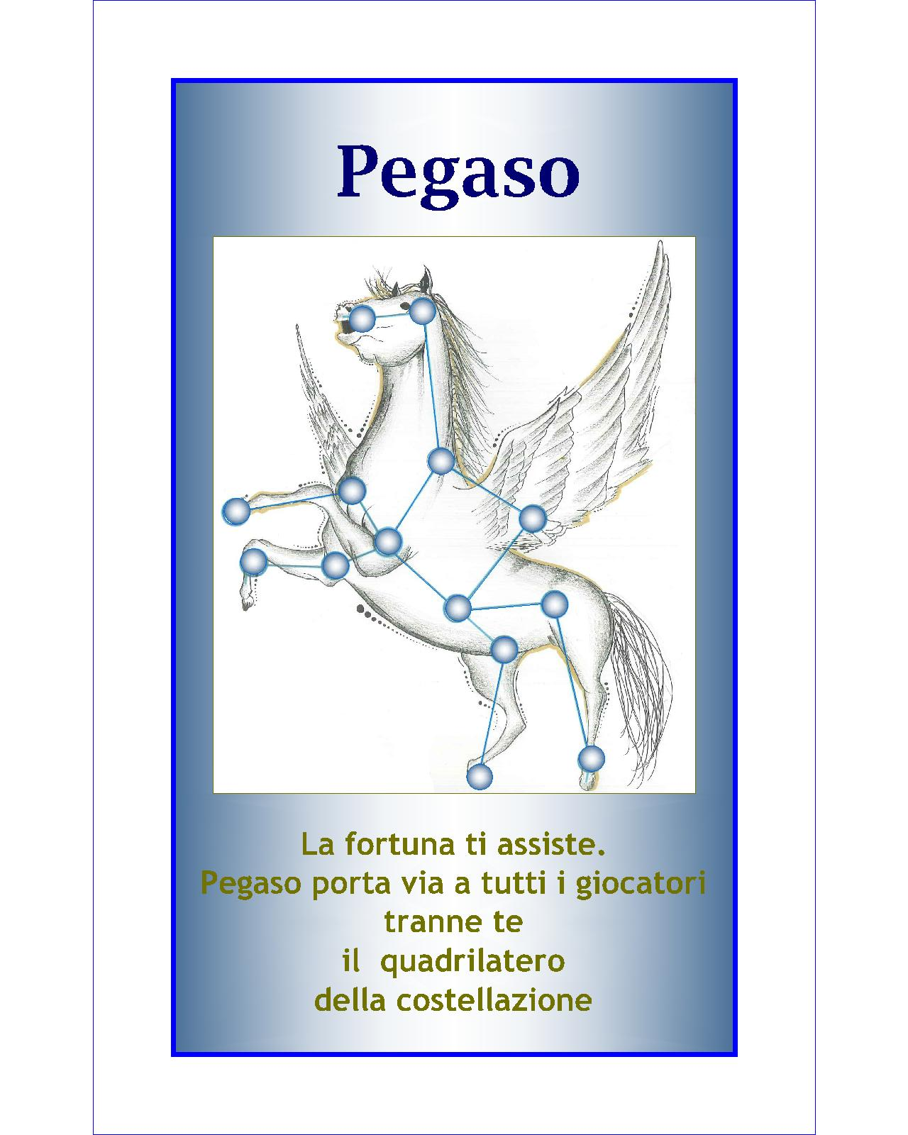 019. Pegaso-Model (Coach M.C. Petroli)